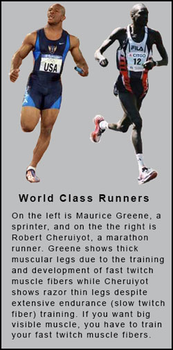Maurice Greene, Robert Cheruiyot. The difference in training different muscle fiber types.