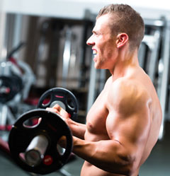 Weight Lifter performing Barbell Biceps Curls