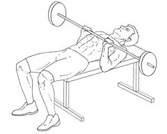 Close-Grip Bench Press - Bottom of Exercise