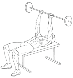 Close-Grip Bench Press - Top of Exercise