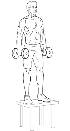 Dumbbell Step-Ups - Top of Exercise
