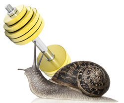 Snail Paced Weight Lifting