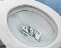 Flushing Supplement Money Down the Toilet