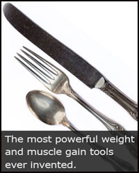 Weight Gain Diet Tools
