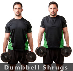 Dumbell Shoulder Shrugs