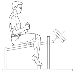 Seated Calf Raises - Top of Exercise