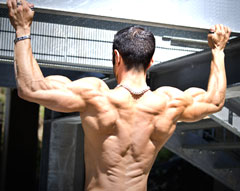 Grip Width for Wide-Grip Pull-Ups